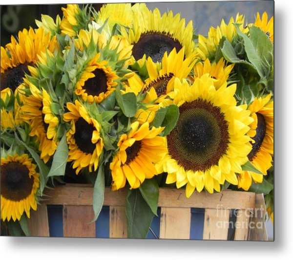 Basket Of Sunflowers Metal Print