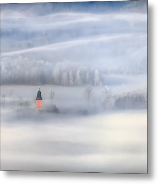 Bathed In Fog Metal Print