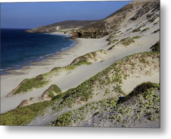 Bay Beach And Sand Dunes Metal Print