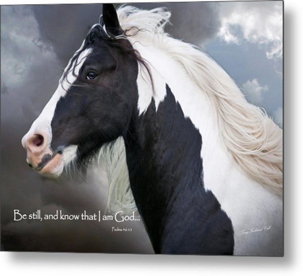 Be Still And Know That I Am Metal Print