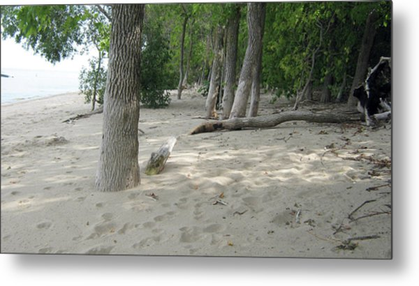Beach At The Lake Metal Print
