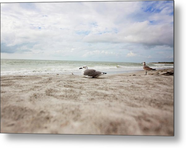 Beach Bum Metal Print