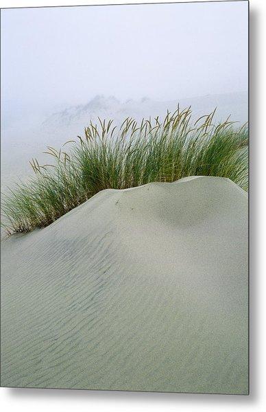 Beach Grass And Dunes Metal Print