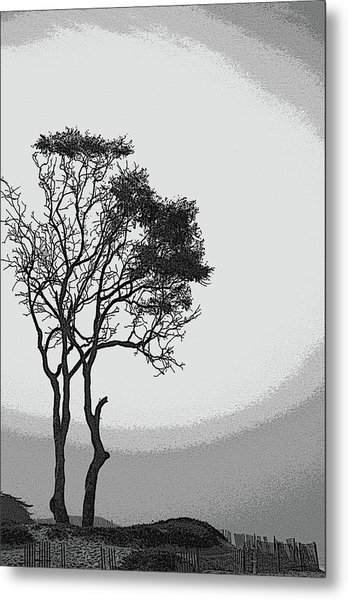 Beach Halo Metal Print