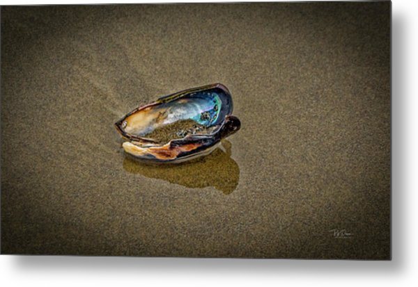 Beach Jewel Metal Print