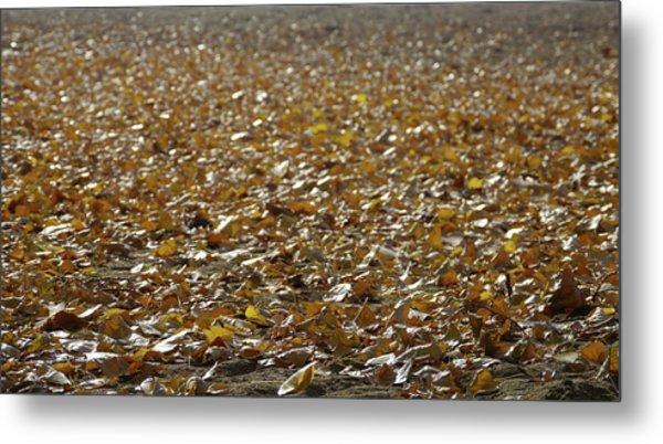 Beach Of Autumn Leaves Metal Print