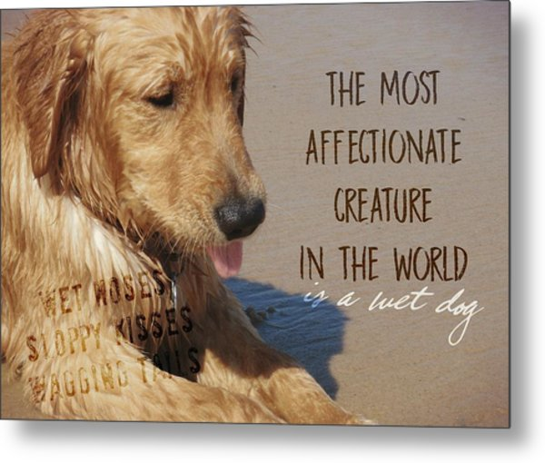 Beach Pup Quote Metal Print by JAMART Photography