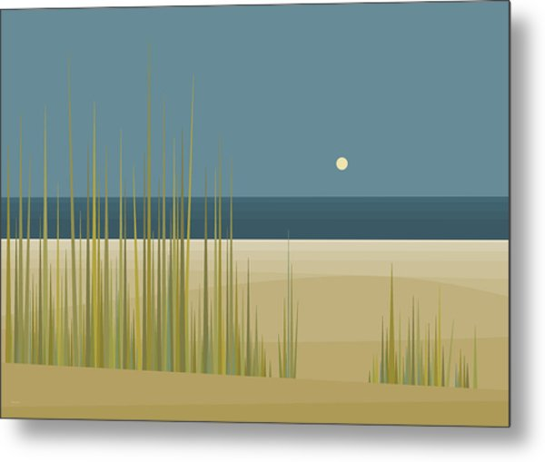 Beaches Metal Print