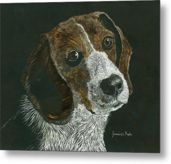 Beagle Portrait Metal Print by Jessica Kale