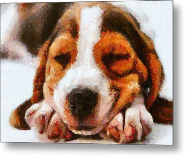 Beagle Puppy Metal Print