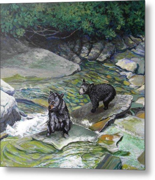 Bear Creek Metal Print