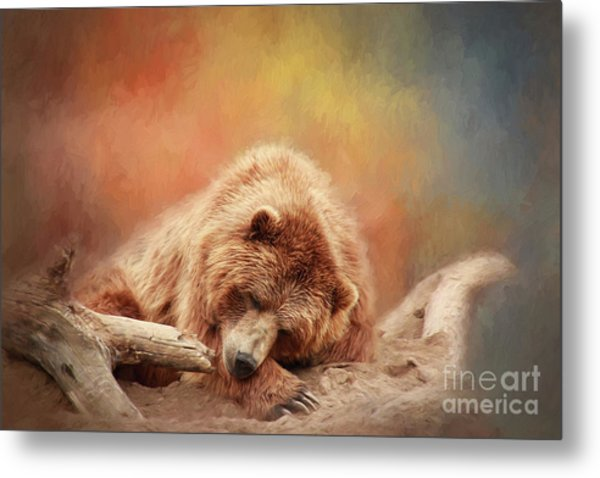 Bearly Asleep Metal Print