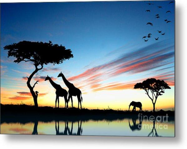Beautiful  Animals In Safari Metal Print
