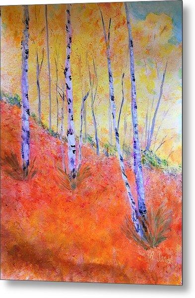 Beautiful Birches Metal Print