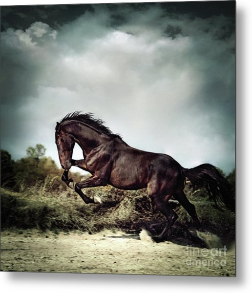 Beautiful Black Stallion Horse Running On The Stormy Sky Metal Print