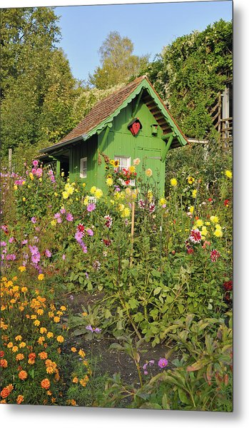 Beautiful Colorful Flower Garden Metal Print