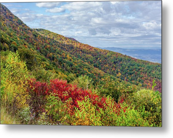 Metal Print featuring the photograph Beautiful Fall Foliage In The Blue Ridge Mountains by Lori Coleman