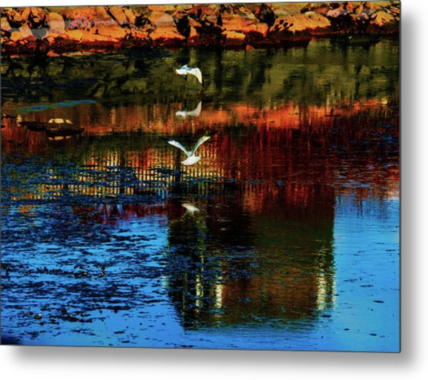 Beautiful II Metal Print