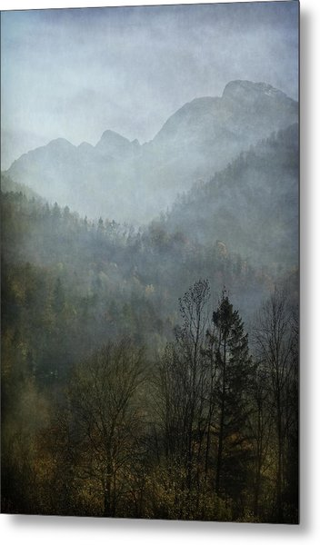 Beautiful Mist Metal Print
