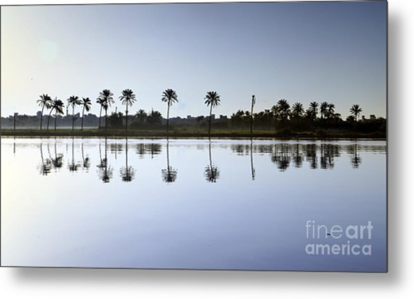 Beautiful Nature In Morning - Egypt. Metal Print