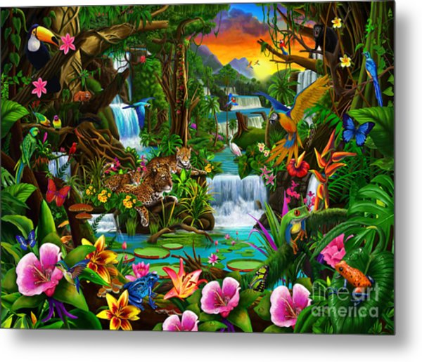 Beautiful Rainforest Metal Print