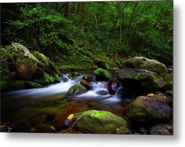 Beautiful Stream In Tremont Smoky Mountains Tennessee Metal Print