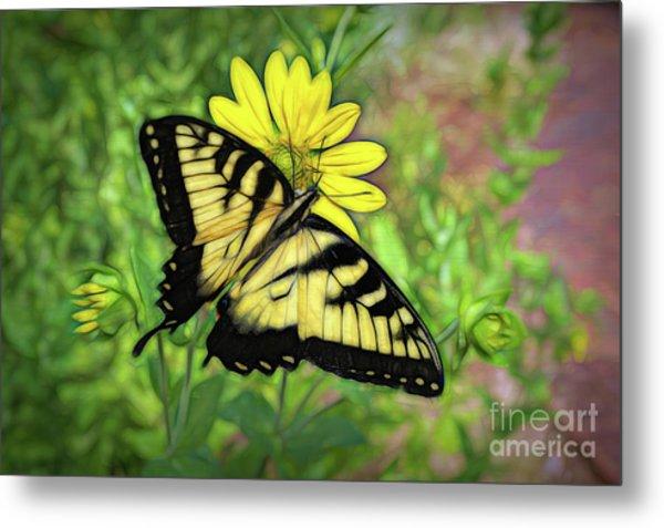 Beautiful Swallowtail Butterfly Metal Print
