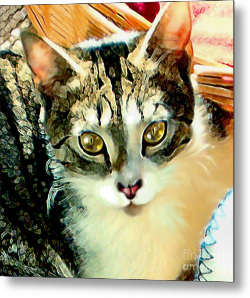 Beautiful Tabby Metal Print