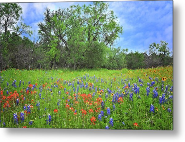 Beautiful Texas Spring Metal Print