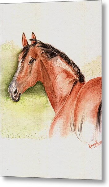 Brown Horse From The Wild Metal Print by Remy Francis