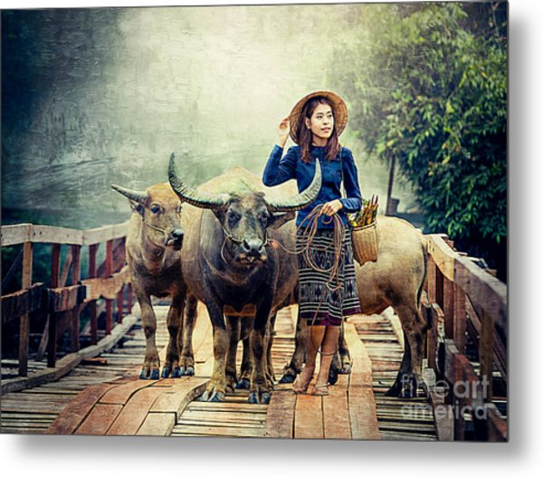 Beauty And The Water Buffalo Metal Print