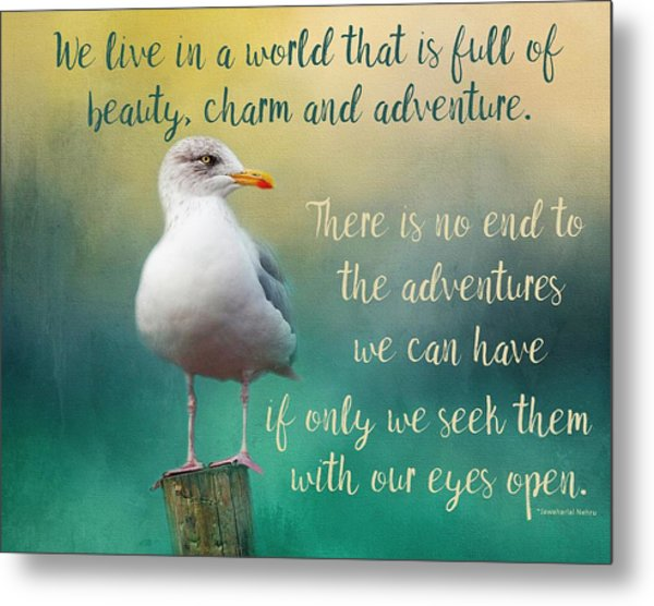 Beauty, Charm And Adventure Metal Print