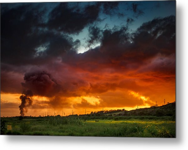 Metal Print featuring the photograph Beauty From Ashes by Geoffrey Lewis