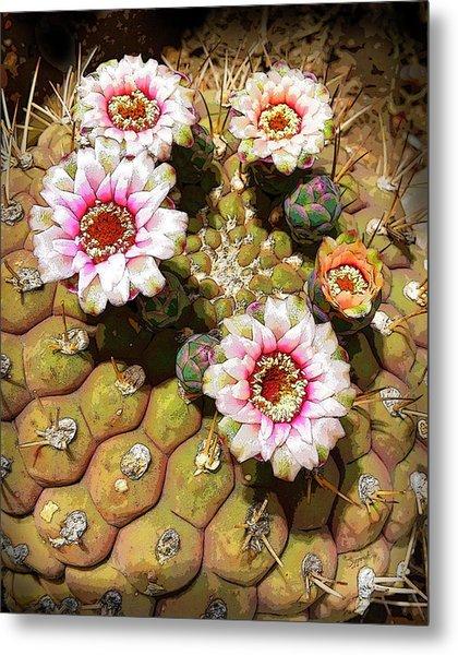 Beauty In The Desert Metal Print