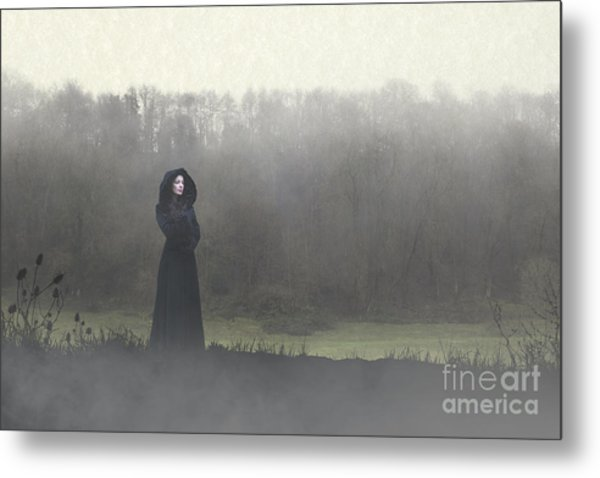 Beauty In The Fog Metal Print