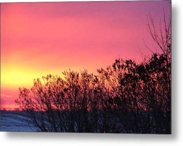 Beauty In The Morning Metal Print