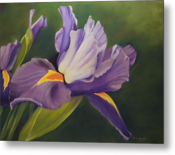Beauty Is In The Iris Metal Print