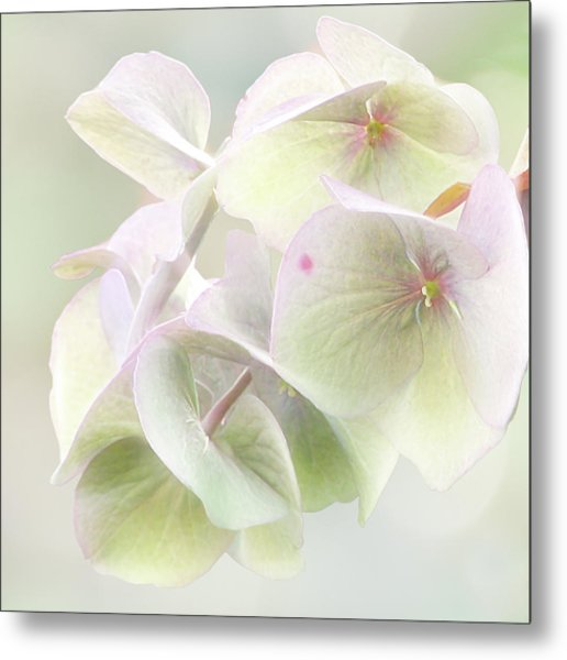 Beauty Mark Metal Print