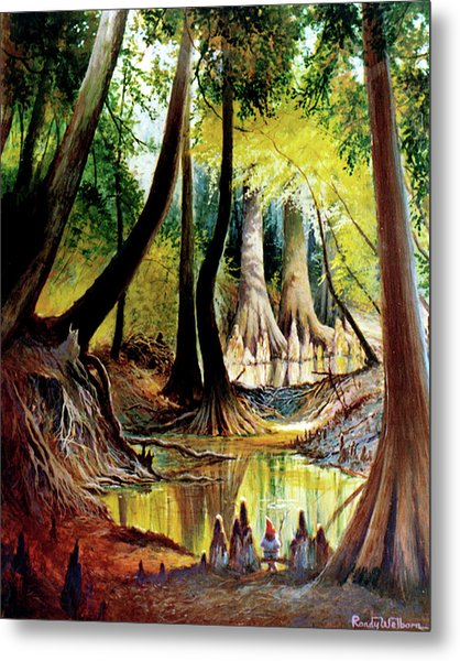 Beaver Dam On Village Creek Metal Print