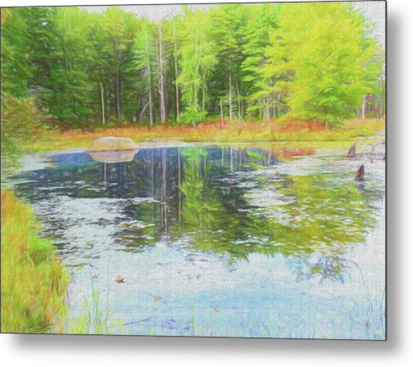 Beaver Pond Reflections Metal Print