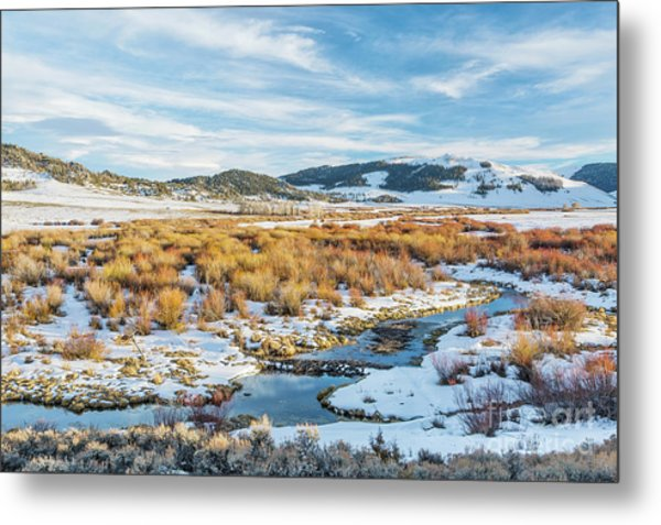 beaver swamp in Rocky Mountains Metal Print