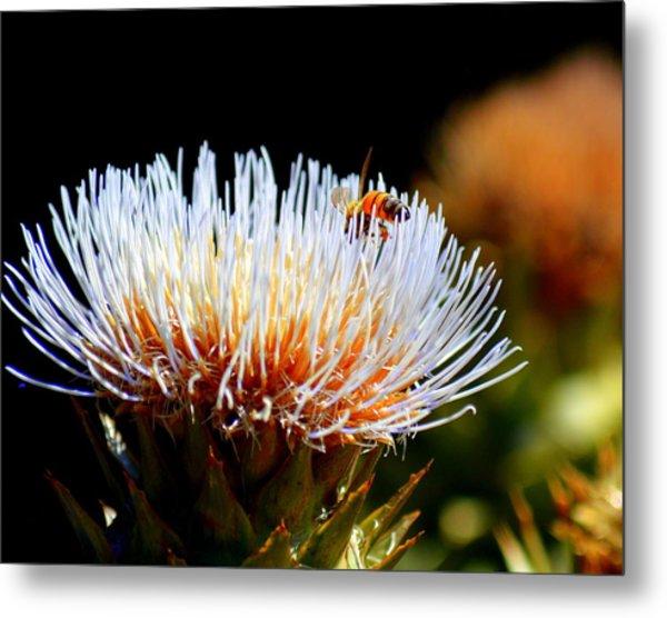 Bee And Artichoke Metal Print