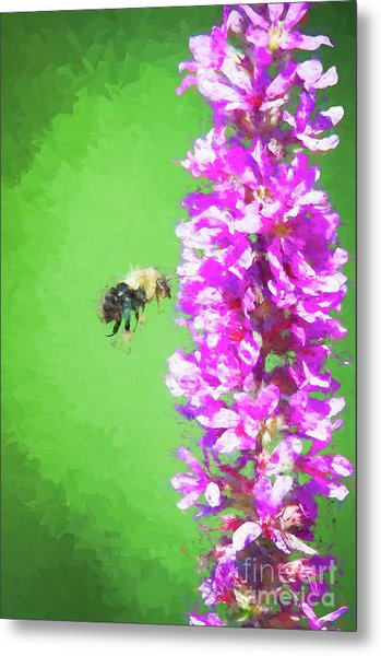Bee Kissing A Flower Metal Print