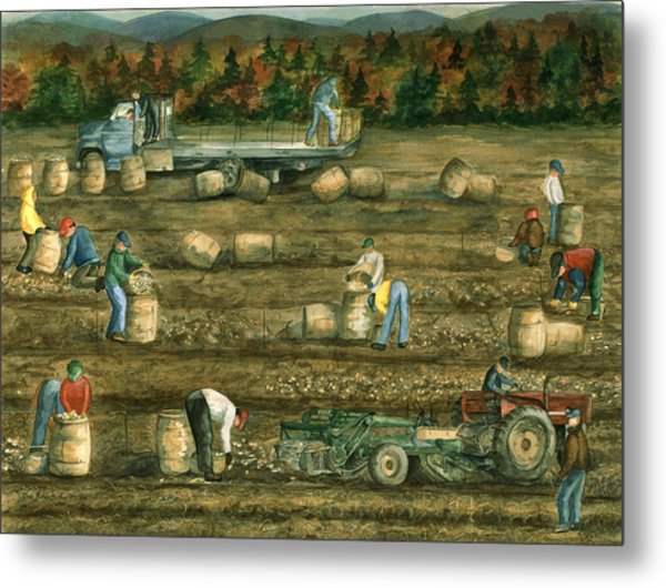Metal Print featuring the painting Been There Done That In Aroostook County by Paula Robertson