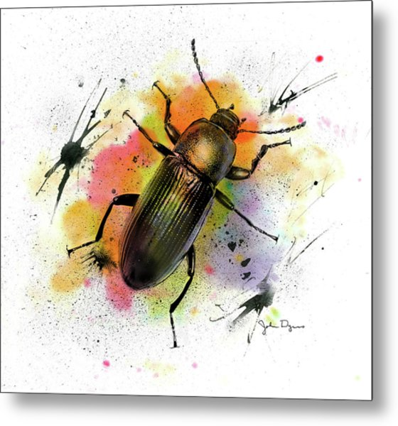 Beetle Illustration Metal Print