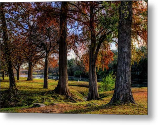 Beginning Of Fall In Texas Metal Print