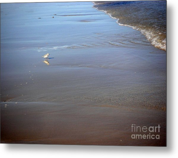Being One With The Gulf - Cautious Metal Print by Lucyna A M Green