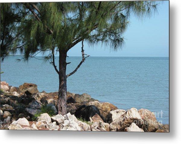 Belize Ocean Front Metal Print