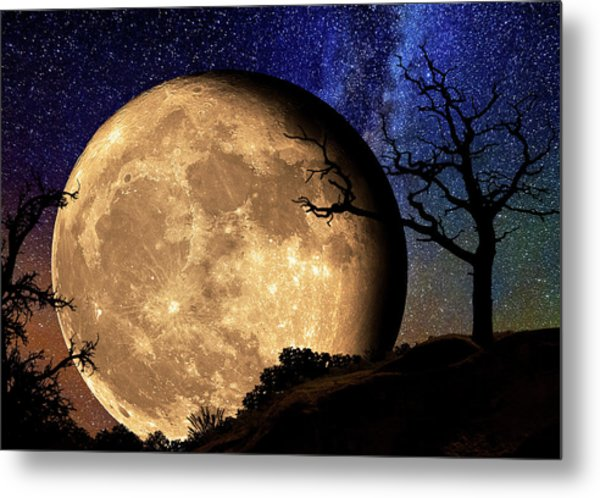 Bella Luna From Another World Metal Print