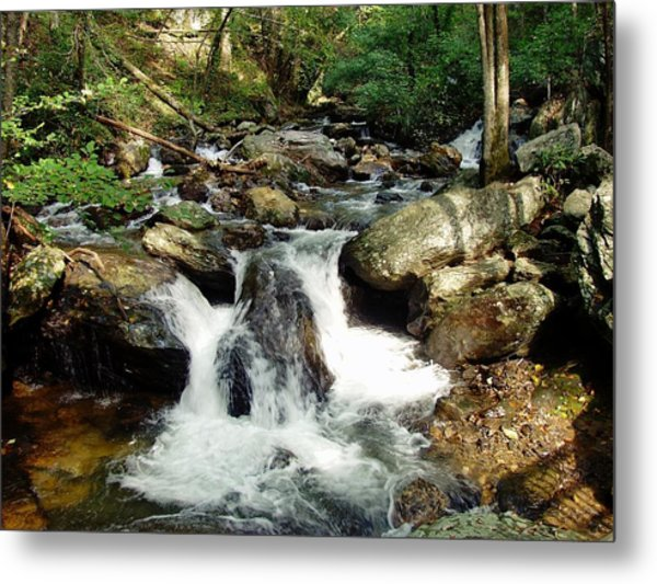 Below Anna Ruby Falls Metal Print